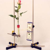 Eksperyment Transpiracja liścia z interfejsem Cobra4