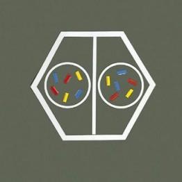 Model Podz. komórki, zapłodnienie