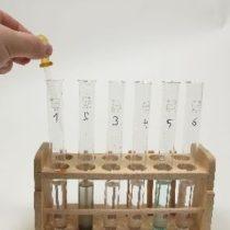 Kompletny zestaw eksperymentalny: Otrzymywanie soli w wyniku reakcji strącania - oznaczanie jakościowe chlorków i siarczanów
