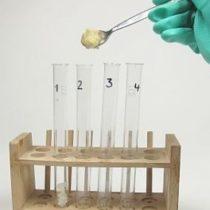 Kompletny zestaw eksperymentalny: Tłuszcz świeży i zużyty w procesie smażenia głębokiego