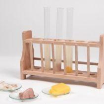 Kompletny zestaw eksperymentalny: Trawienie w jelitach
