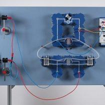 Kompletny zestaw eksperymentalny: Instalacja wodorowo - wiatrowa